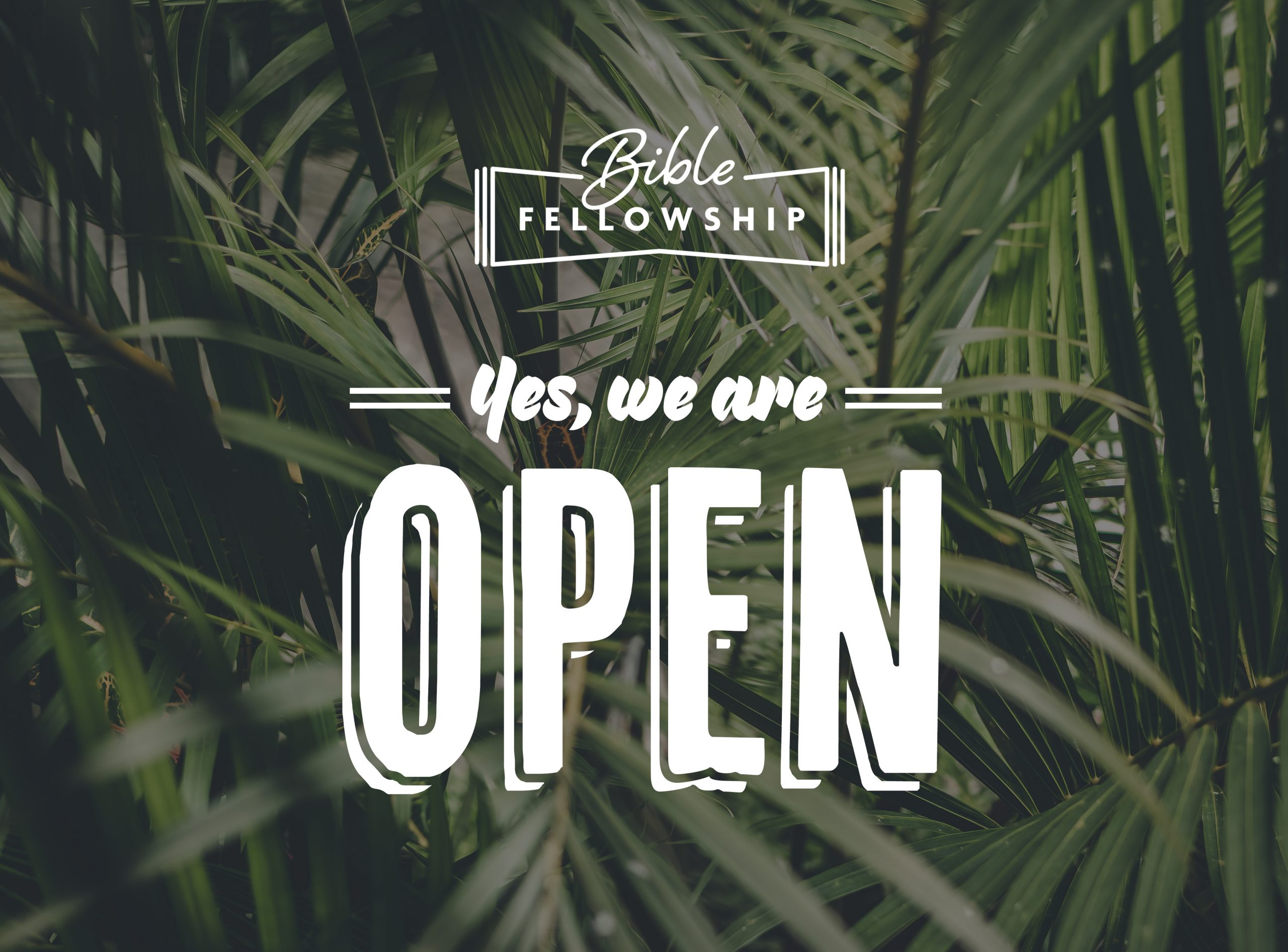 Yes We Are Open.